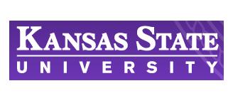 KSU Logo logo - homepage carousel - J Street Technology - Database Programmer - 98004