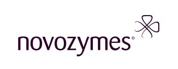 Novozymes logo - homepage carousel - J Street Technology - Database Programmer - 98004